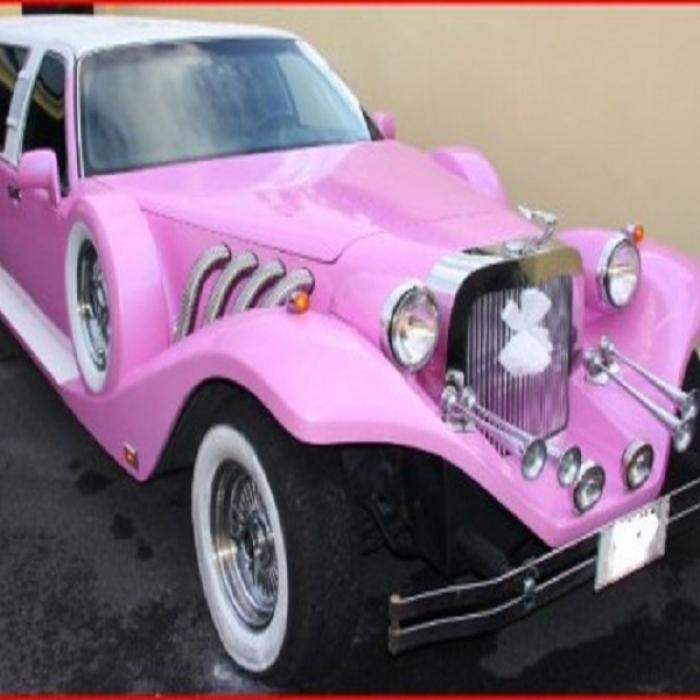 Pink_Excalibur_252_578_69825